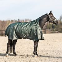 Horze Avalanche 1200D 300G Heavy Weight Standard Neck Turnout Rug Forest Night/Dusky Green