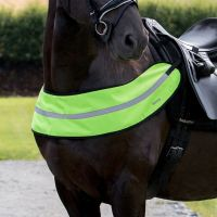 Horze Reflective Harness Yellow
