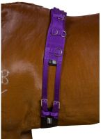 Kincade Deluxe Equigrip Lunge Roller Purple