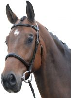 Kincade Raised Cavesson Bridle Brown