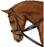 Kincade Webbed Draw Reins Black
