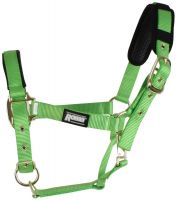Roma Brights Headcollar Lime