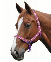 Roma Hearts Headcollar Purple
