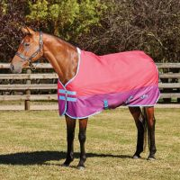 Saxon 600D 0g Lightweight Standard Neck Turnout Rug Rose/Purple/Blue