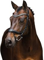 Schockemohle Equitus Beta Double Bridle Black