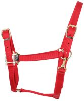 Shires Adjustable Headcollar Red