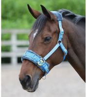 Shires Fleece Lined Lunge Cavesson Blue