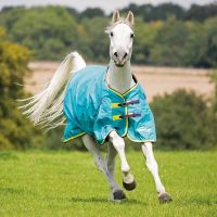 Shires Highlander Original 100g Medium Weight Standard Neck Turnout Rug Aqua/Lime/Purple