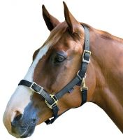 Shires Pro Adjustable Headcollar Black