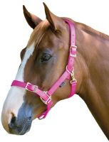 Shires Pro Adjustable Headcollar Pink
