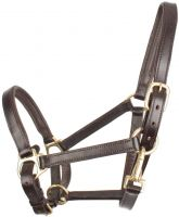 Shires Ragley Leather Headcollar Brown