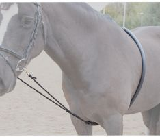 Shires Soft Lunging Aid Black