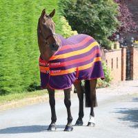 Shires Tempest Original Newmarket Fleece Rug Purple Stripe