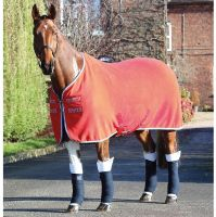 Shires Tempest Original Stable Sheet Red/Navy/Grey