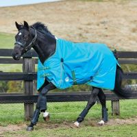 WeatherBeeta ComFiTec Essential 0g Lite Weight Standard Neck Turnout Rug Blue/Bright Green/Cerise
