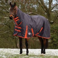 WeatherBeeta ComFiTec Essential 360g Heavyweight Combo Neck Turnout Rug Iron/Flame