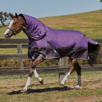 WeatherBeeta ComFiTec Plus Dynamic 0g Lightweight Detach-A-Neck Turnout Rug Purple/Black