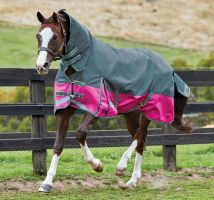 WeatherBeeta ComFiTec Plus Dynamic 0g Lite Weight Combo Neck Turnout Rug Sea Green/Pink/Yellow
