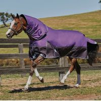 WeatherBeeta ComFiTec Plus Dynamic 360g Heavyweight Detach-A-Neck Turnout Rug Purple/Black