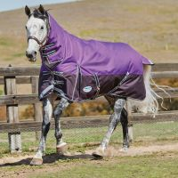 WeatherBeeta ComFiTec Plus Dynamic Wide 220g Medium Weight Combo Turnout Rug Purple/Black