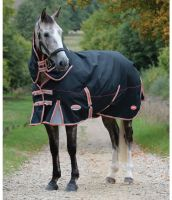 WeatherBeeta ComFiTec Premier Therapy-Tec 220g Medium Weight Detach-A-Neck Turnout Rug Black/Red/Silver