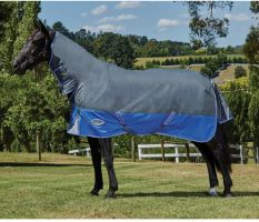 WeatherBeeta ComFiTec Premier Thinsulate 350g Heavyweight Combo Turnout Rug Grey/Blue