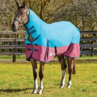 WeatherBeeta ComFiTech Classic 220g Medium Weight Combo Neck Turnout Rug Teal/Shiraz/Blue
