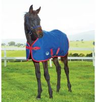 WeatherBeeta Original 1200D 220g Medium Weight Foal Rug Navy/Red/White