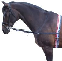 Whitaker Elasticated Side Reins