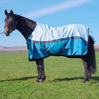 Whitaker Healey Lightweight Standard Neck Turnout Rug Sky Blue
